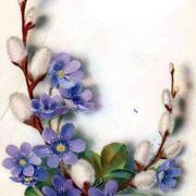 цветы картинки открытки