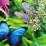 красивые открытки 2014