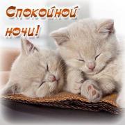 спокойной ночи красивые открытки