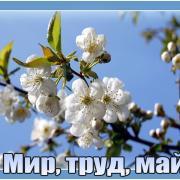 день весны 1 мая открытки