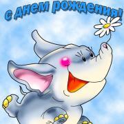 слоник на открытке ко дню рождения