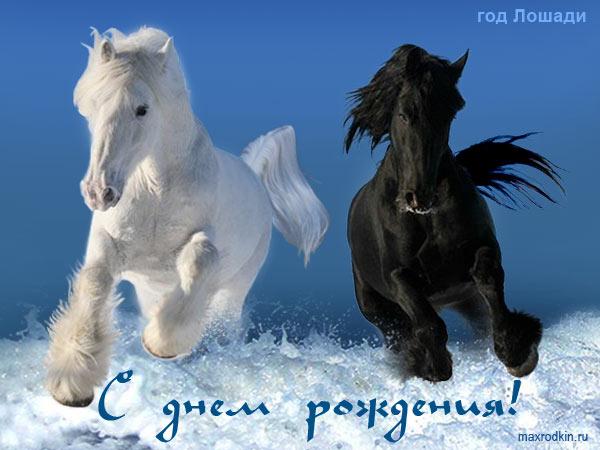 картинка с днем рождения с лошадью