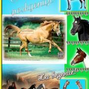 открытка с лошадью закат