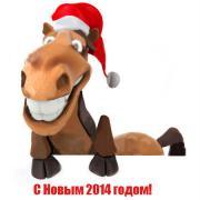 красивая лошадь открытка 2014
