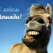 нарисованная лошадь открытка