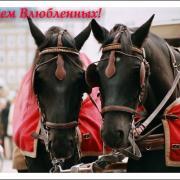 прикольные открытки с лошадьми