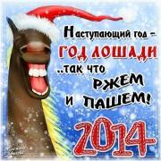 открытка пара лошадей