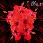 цветы на открытке к юбилею